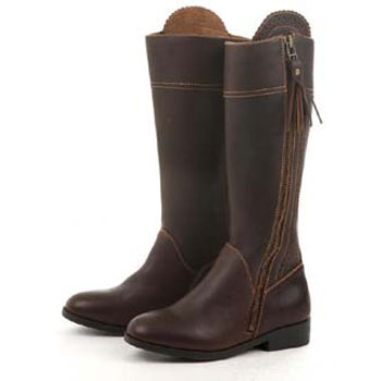 Dublin Tempt Tall Boots in Brown