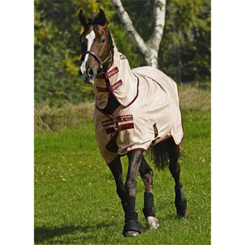 Amigo Mio Pony Fly Rug Bronze Red