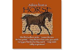 Advice From a Horse Note Cards