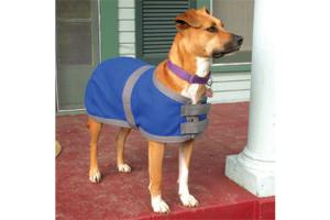 Blue Ribbon Custom Wool Dress Dog Jacket