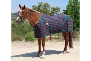 5/A Baker Sheet in Tartan Plaid
