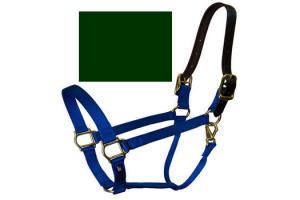 Walsh Breakaway Halter in Hunter Green