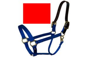 Walsh Breakaway Halter in Red