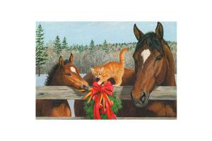 Carrots for Christmas Holiday Boxed Cards