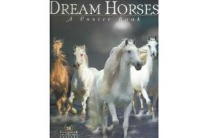 Dream Horses: A Poster Book,Softcover | ISBN-10: 978-1-58017-574-6| ISBN-13: 9781580175746