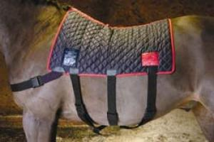 Equilibrium Therapy Magnetic Back Pad