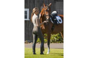 FITS PerforMAX Full Seat Breeches in Mink