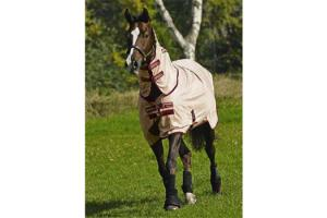 Amigo Mio Pony Fly Rug - Bronze Red