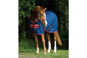 Amigo Mio Stable Sheet in Navy and Red
