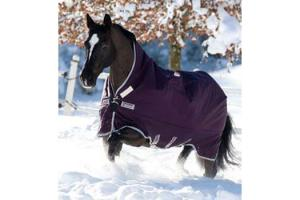 Rambo Wug Purple and Silver Lite Turnout Sheet