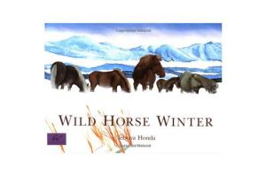 Wild Horse Winter, Softcover |ISBN-10: 0-8118-1211-1|ISBN-13: 9780811812115