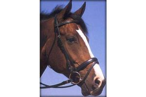 KL Select Fanfare Black Dressage Bridle
