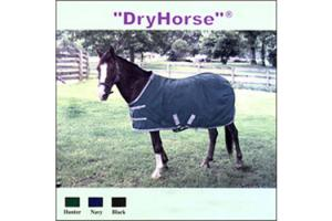 Dry Horse Sheet and Blanket
