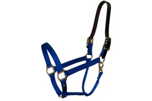 Walsh Breakaway Halter in Blue