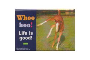 Whoo hoo life is good magnet