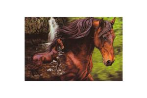Kim McElroy Waterfall Horses Magnet