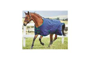 Weatherbeeta Pony Genero 1200D Standard Neck Medium 220g Turnout in Navy and Hunter