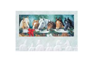 Stable Buddies Holiday Cards
