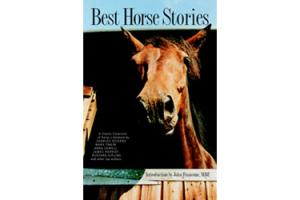 Best Horse Stories by Lesley O'Mara