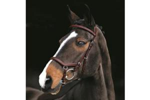 Rambo Micklem Competition Bridle in Australian Nut
