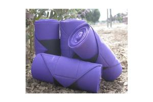 Champion Standing Bandages in Purple