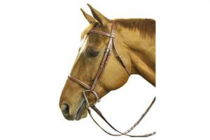 Collegiate Plain Raised Chestnut Bridle