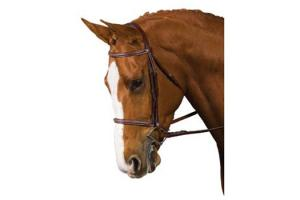 Collegiate Brown Fancy Raised Bridle