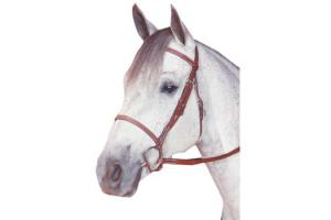 Kincade Fancy Brown Raised Bridle