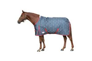 Weatherbeeta Joules 600D Lite Turnout Sheet in Holly Stars