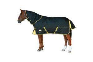 Weatherbeeta Orican Freestyle Detach-a-Neck Medium 220g Turnout in Black and Gold