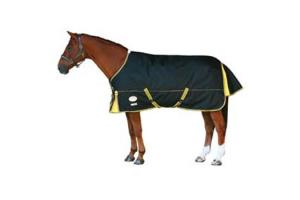 Weatherbeeta Orican Freestyle Standard Neck Medium 220g Turnout in Black and Gold