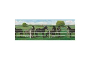 Saddle Up RU8243B Wallpaper Border by York
