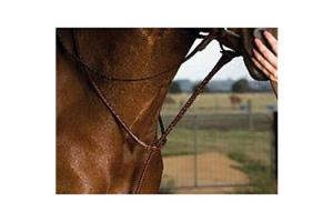 Kincade Raised Standing Brown Martingale
