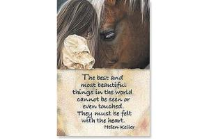 The Best & Most Beautiful Things Horse Magnet