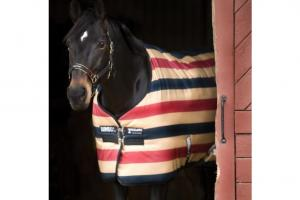 Rambo Newmarket Stable Rug in Witney Gold