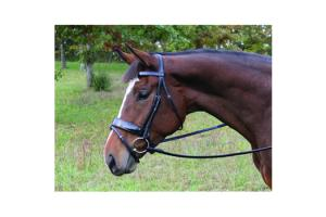 Vespucci Patent Leather Dressage Snaffle Bridle Black