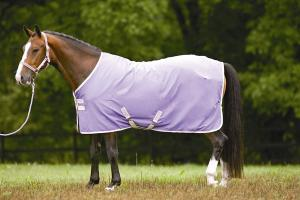 Amigo Pony 1200D Medium Turnout Blanket in Purple and Alabaster