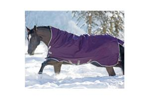 Rambo Purple Wug Heavy Turnout Blanket