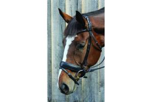 Vespucci Rolled Leather Snaffle Bridle Black