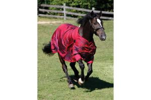 Shires Winter StormCheeta 200g Turnout Rug in Poppy Red