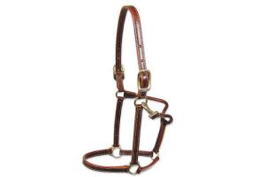 Walsh Leather Showman Halter in Chestnut