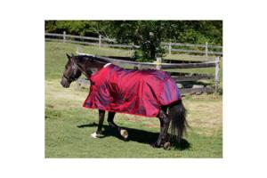 Shires StormCheeta 2000D Rain Sheet in Poppy Red