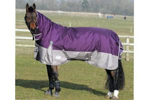 Weatherbeeta Original 1680D Detach-A-Neck Medium 220g Turnout in Violet and Grey