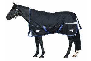 Weatherbeeta Freestyle 1200D High Neck Medium 220g Turnout in Black and Purple