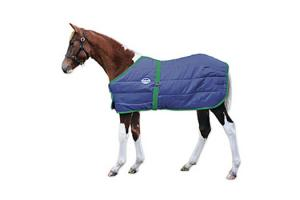 Navy with Hunter Trim Weatherbeeta Newborn Foal Blanket