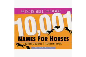 The Incredible Little Book of 10,001 Names for Horse, Softcover |ISBN-10: 0-9638814-3-4 |ISBN-13: 08255655002