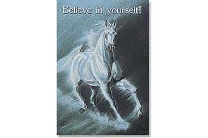 Believe in Yourself Horse Magnet