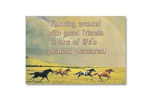 Running with Friends Horse Magnet