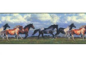 Horses Running Free NV9448B Wallpaper Border by York