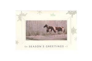 Snow Scenes Boxed Christmas Cards